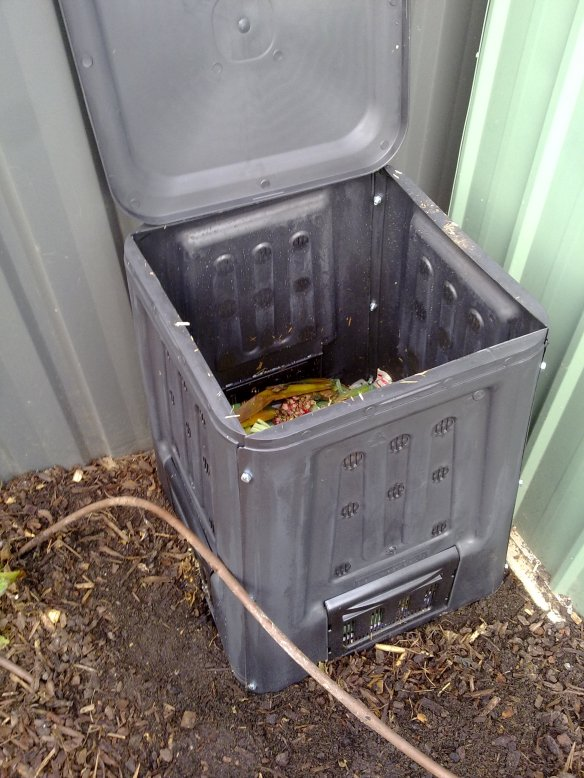 Compost bin or compost stack will happily take the coffee grounds for the garden