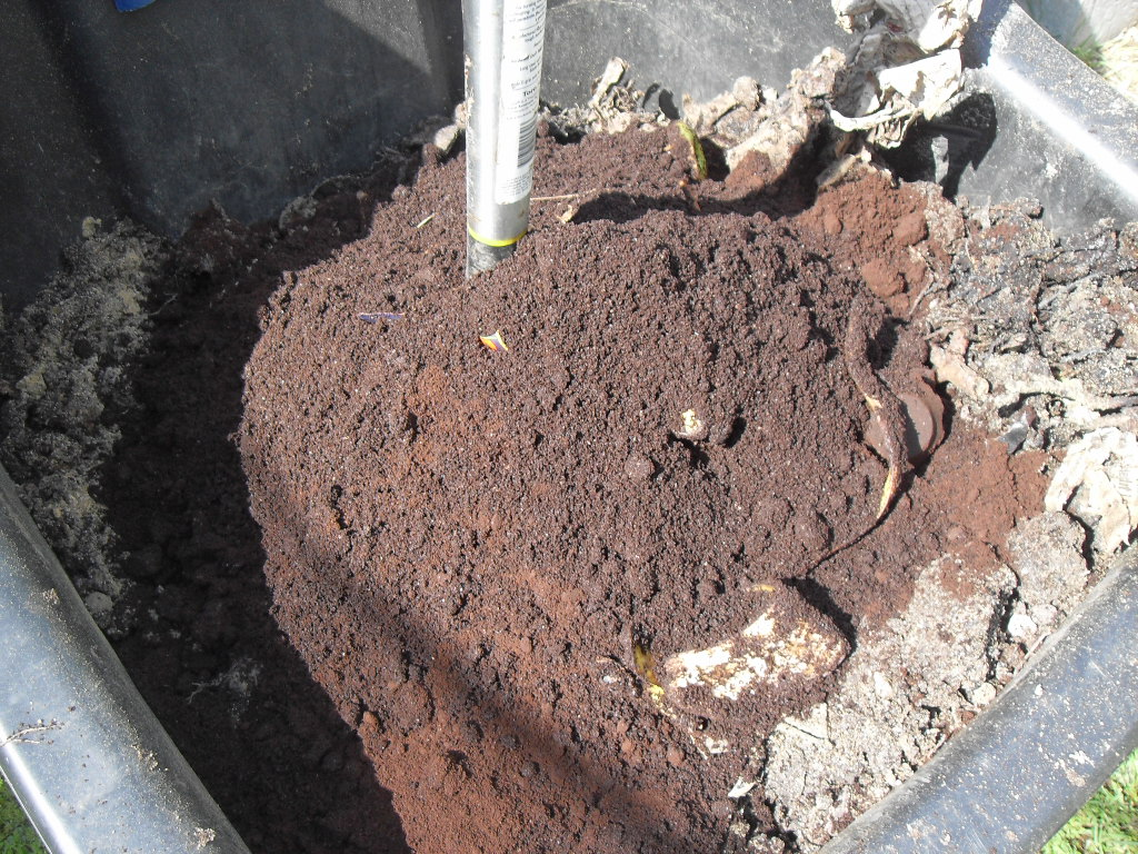 coffee grounds lawn fertilizer
