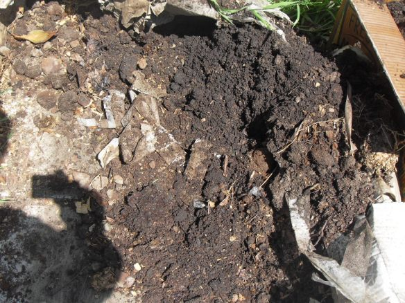 coffee compost to help soil