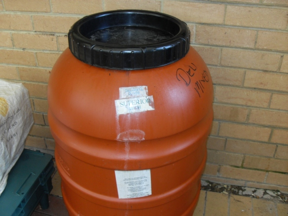 reuse of olive drum for rain water