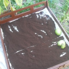 How to Dry and Store Used Coffee Grounds