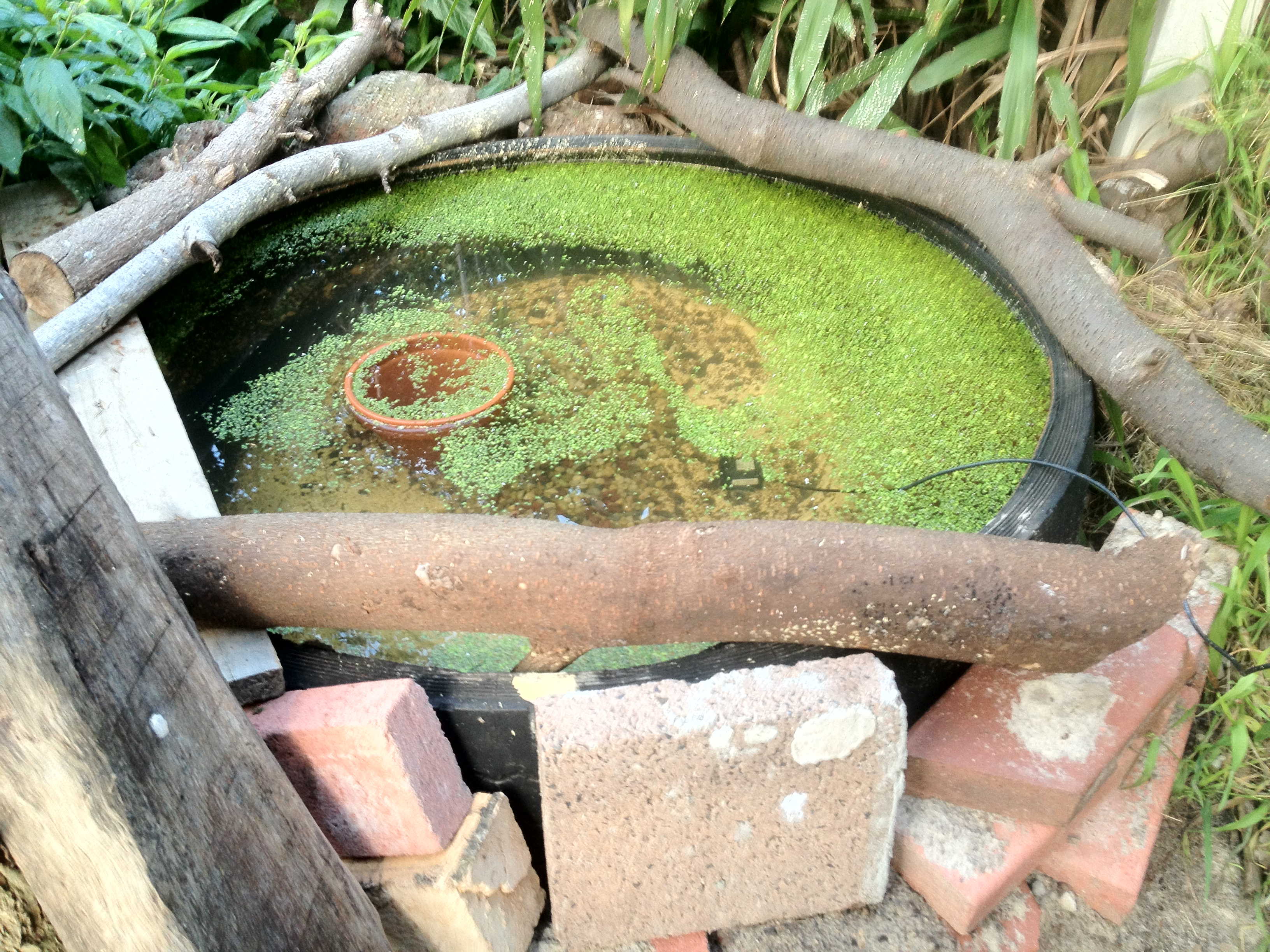 How to build a pond from tires ground to ground for Pond in a pot with fish