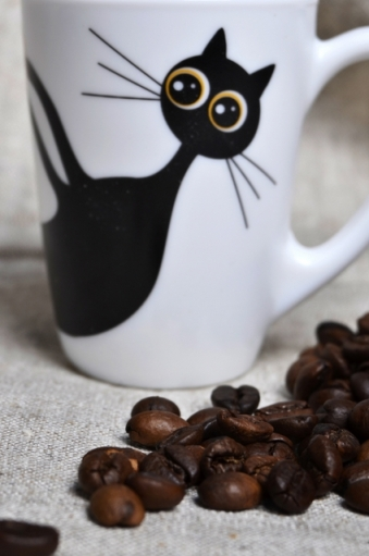 a cup of coffee with cat