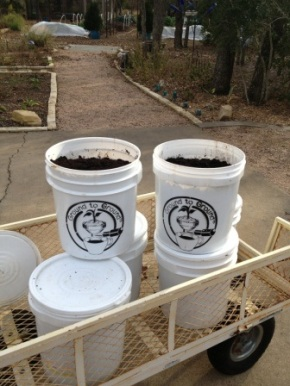 Caffeinate Your Compost