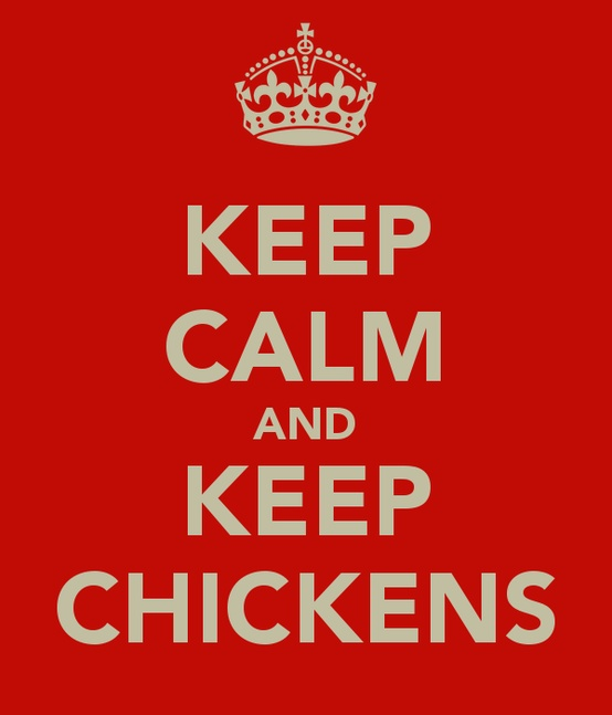 the keep calm chickens poster