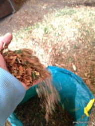 mulch into a bag