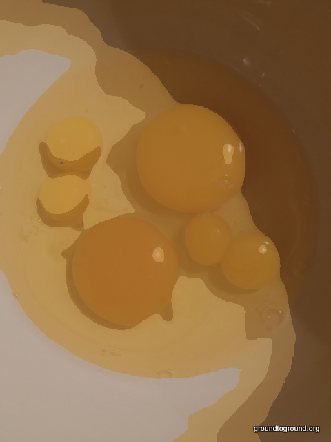weird image of eggs