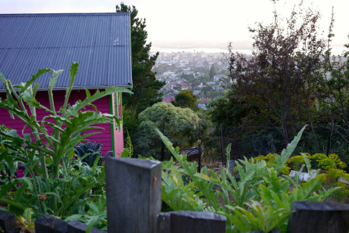 1402 Good Life Permaculture06