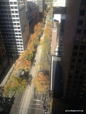 The Melbourne City Forest inAutumn