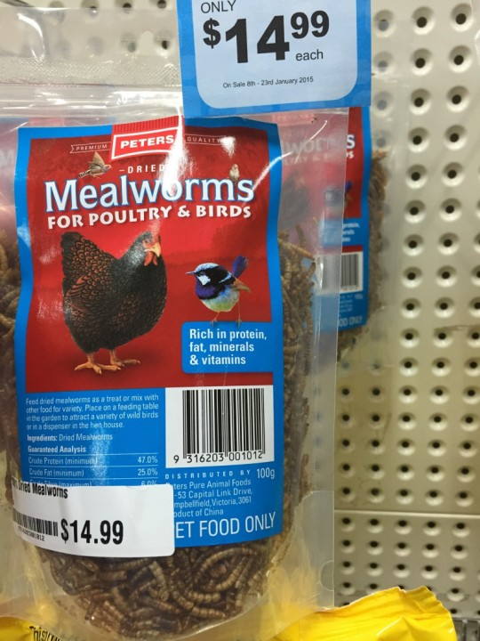 Bag of mealworms for chickens