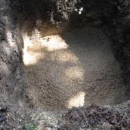 Pelusa Compost-3