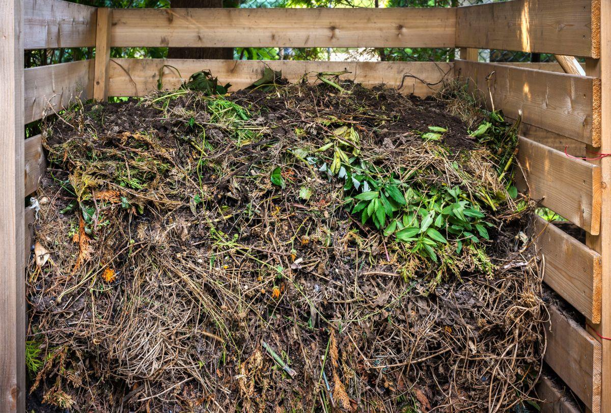 Mulching for Low-Maintenance Gardening | Ground to Ground