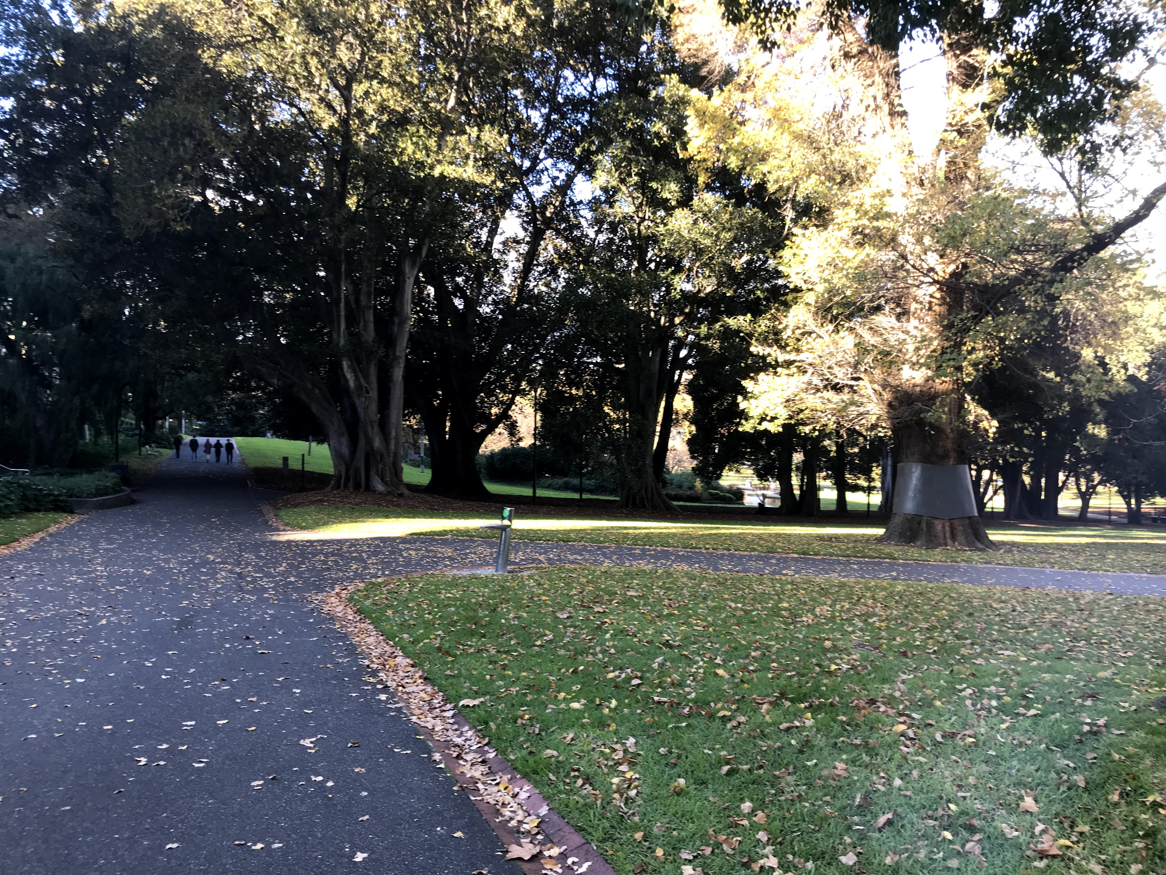 Treasury Gardens Melbourne